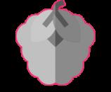icon-framboise2